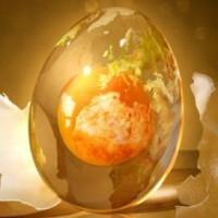 egg-donation-1