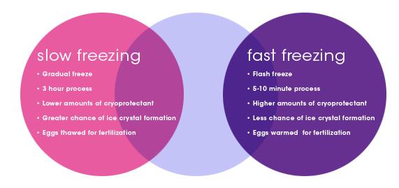 Eggsurance_Diagram_Slow_Fast_Freezing